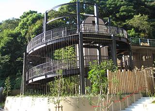 写真:福岡市動植物園、オランウータン舎